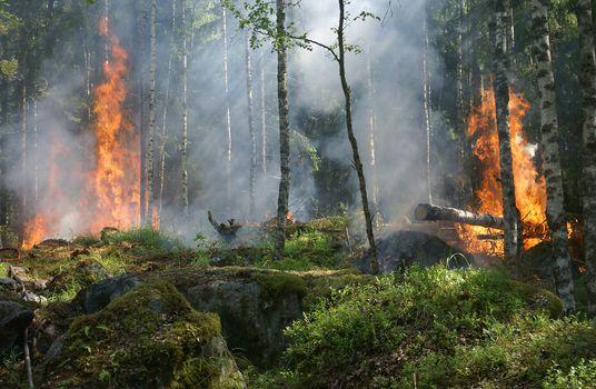 Photo free geological phenomenon, Sweden, burning