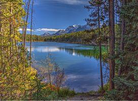 Бесплатные фото озеро, горы лес деревья, природа, пейзаж