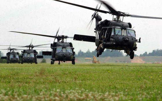 Бесплатные фото Sikorsky UH-60 Black Hawk,вертолеты,военные самолеты