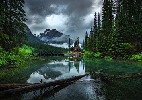 Photo free Canada, tree, Emerald lake