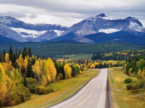 Photo free Cadomin, Alberta, autumn