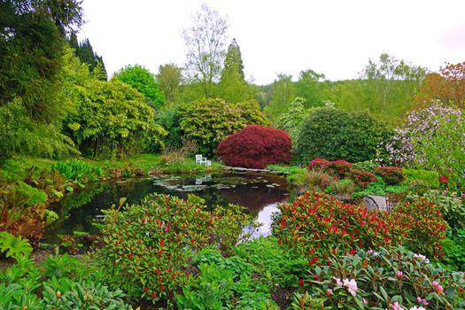 Заставки цветы, сад, Англия