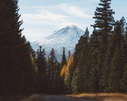 Бесплатные фото природа,горы,деревья,снег,дорога