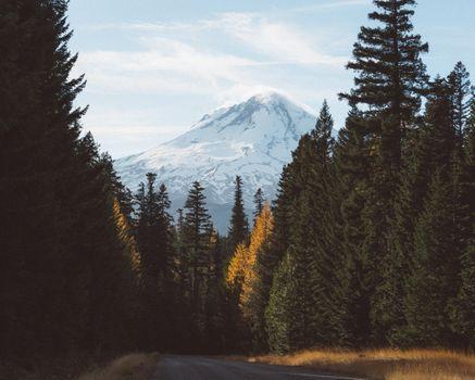 Заставки природа,горы,деревья,снег,дорога