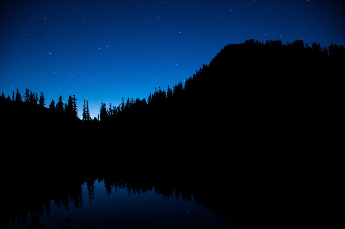 Photos for free night sky, trees, starry sky - to the desktop