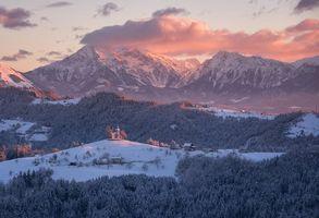Обои Словения, Альпы, горы, зима, деревья, церковь, пейзаж