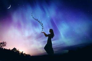 Бесплатные фото ночь,сияние,девушка,голуби,art