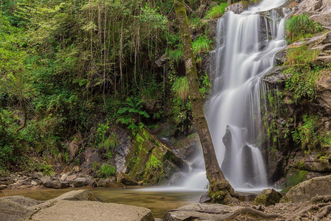 Картинка водопад, скалы, деревья, природа, пейзаж, Sever do Vouga, Авейру, Португалия на рабочий стол. Скачать фото обои пейзажи