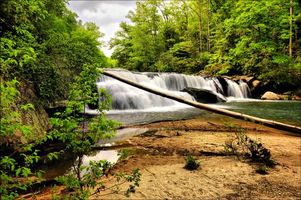 Бесплатные фото река,водопад,лес,деревья,пейзаж