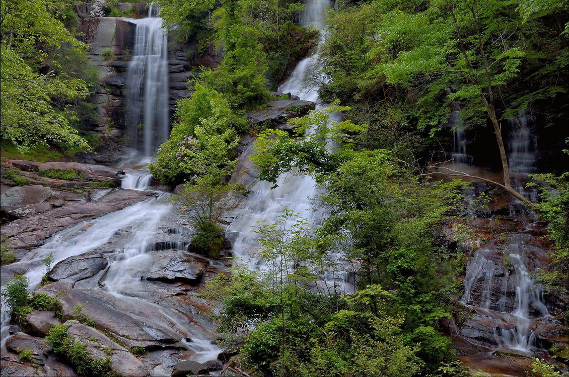 Фото бесплатно лес, деревья, скалы, водопад, природа, природа