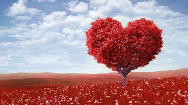 Дерево в виде сердца