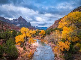 Фото бесплатно природа, национальный парк сиона, США