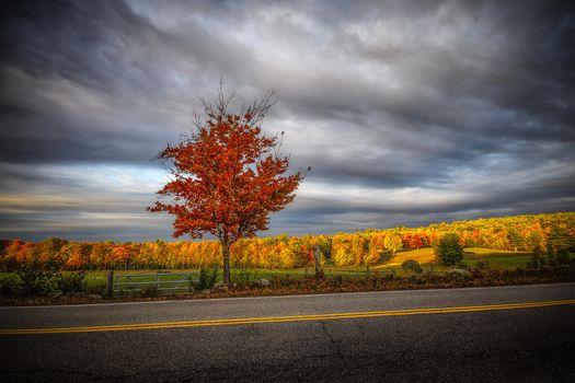 Photo free autumn, sunset, field