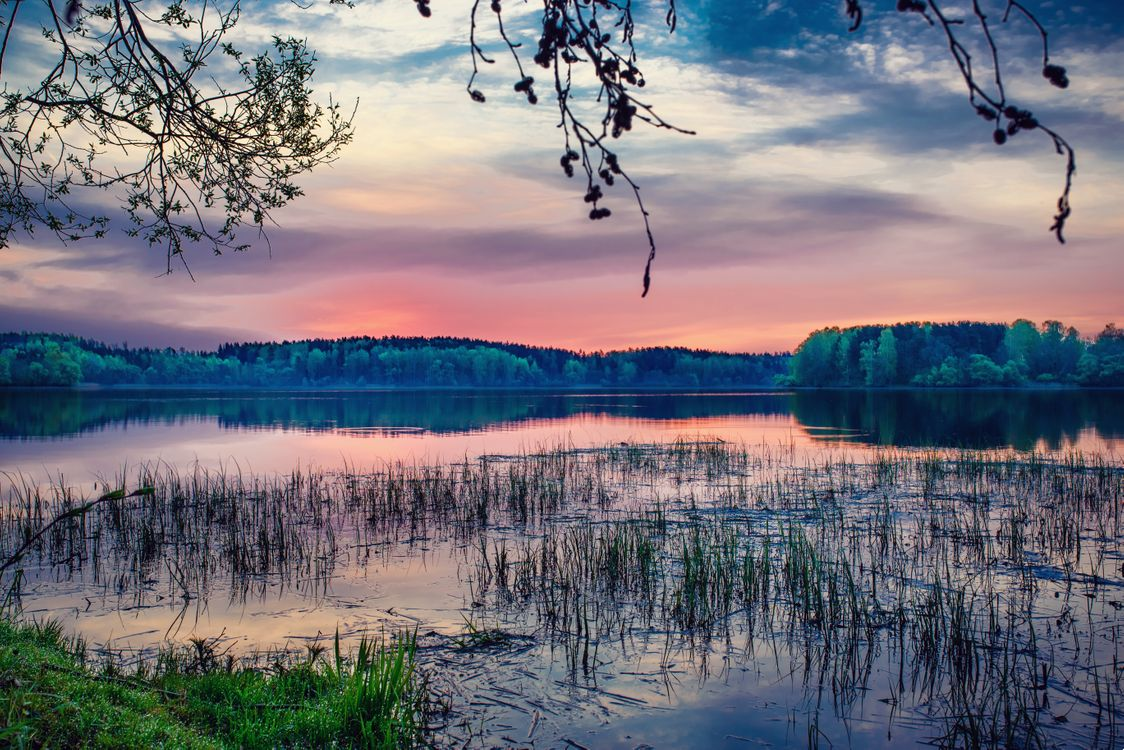 Photos for free sunset, lake, forest - to the desktop