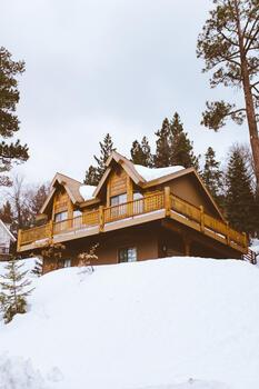 Фото бесплатно дерево, горы, снег