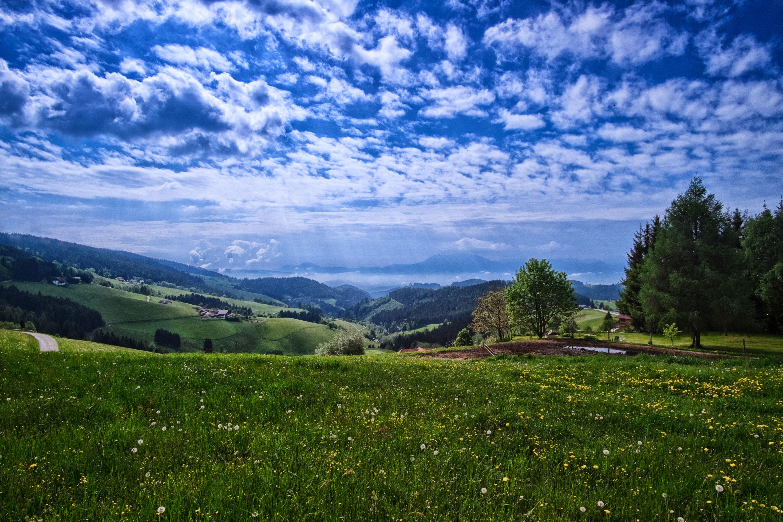 обои Karnten, Austria, поля, холмы картинки фото
