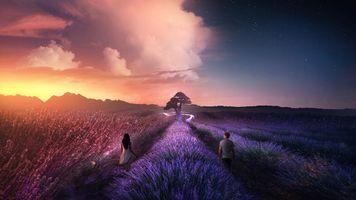 Обои закат, поле, цветы, лаванда, девушка, парень, пейзаж