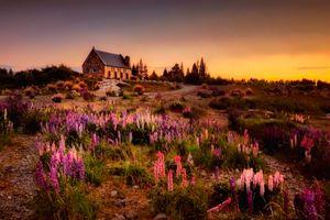 Photo free New Zealand, house, cottage