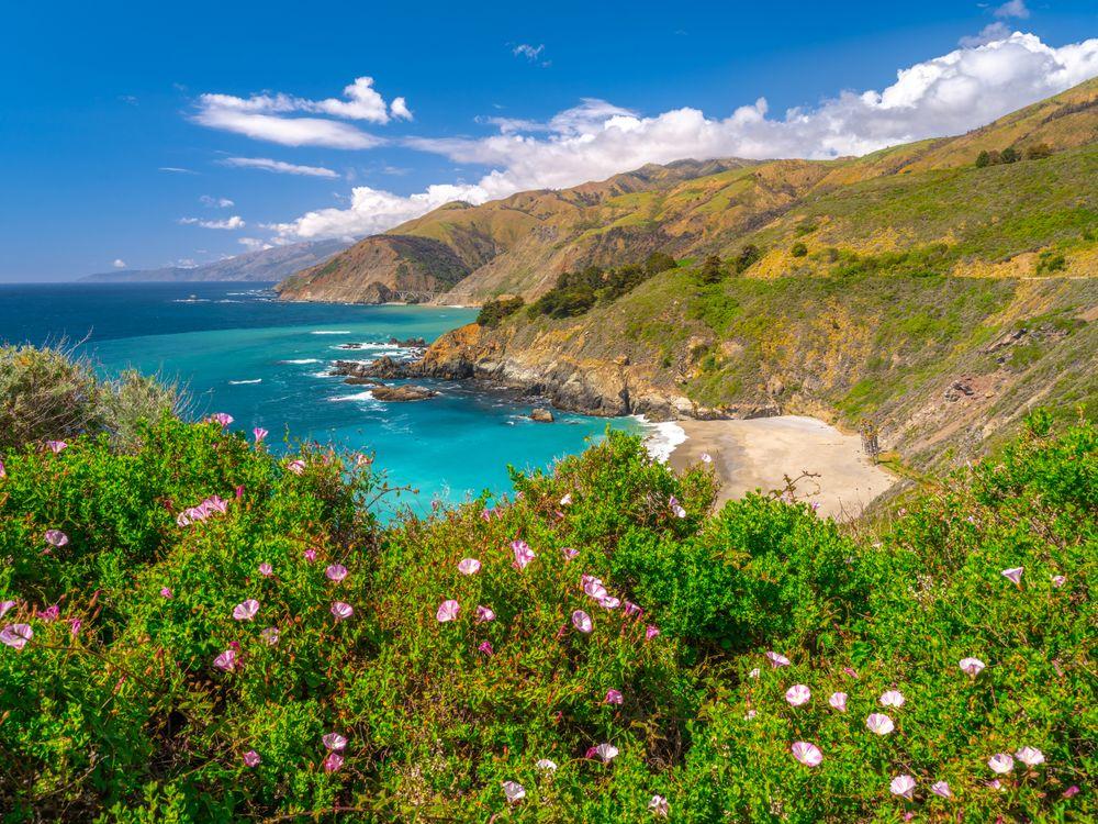 Фото прибрежное сша побережье океан - бесплатные картинки на Fonwall