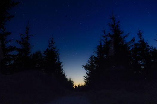 Бесплатные фото звездное небо,ночь,деревья,starry sky,night,trees