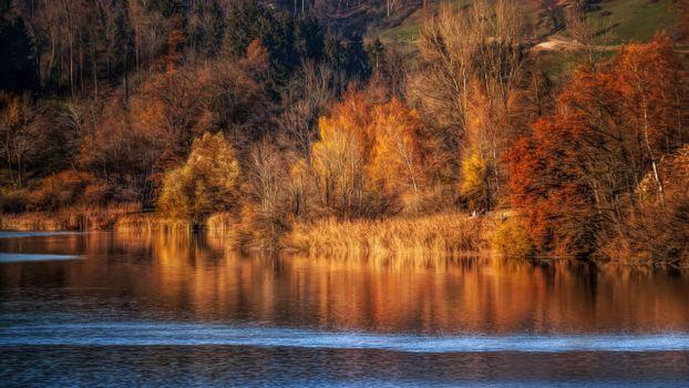 Фото бесплатно осень, спокойствие, река