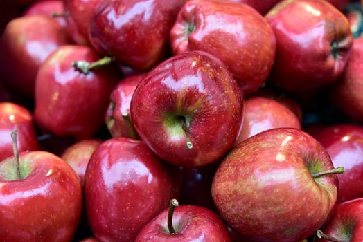 Photo free food, red, apples