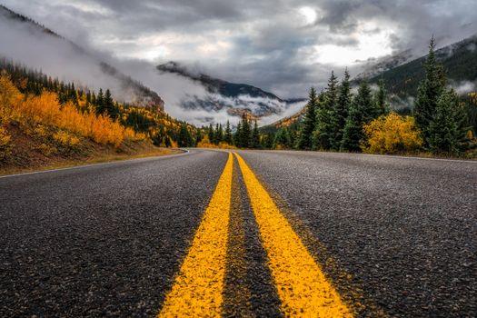 Photo free road, San Juan Mountains, forest