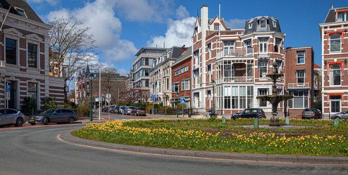Photo free cities, Netherlands, street