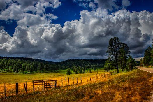 Фото бесплатно земля, леса, забор