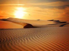 Фото бесплатно засуха, солнце, песок