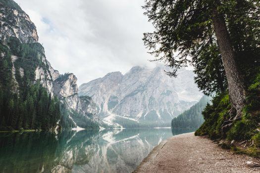 Photo free tree, nature, mountains