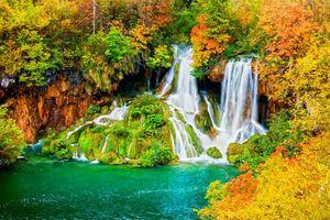 Бесплатные фото осень, лес, деревья, водоём, водопад, пейзаж