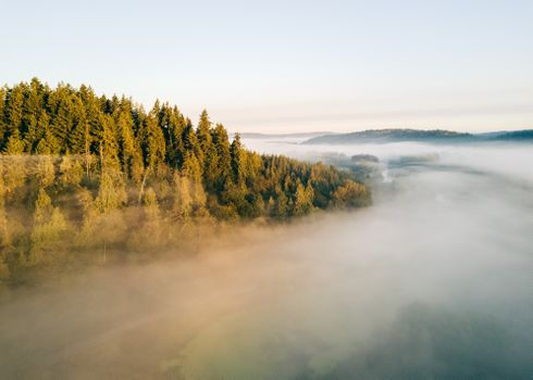 Photo free hill, fog, trees