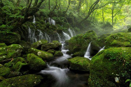 Заставки природа, каменистый ручей, туман