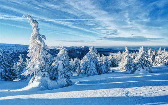 Заставки Jeseniky Mountains, Czech Republic, зима