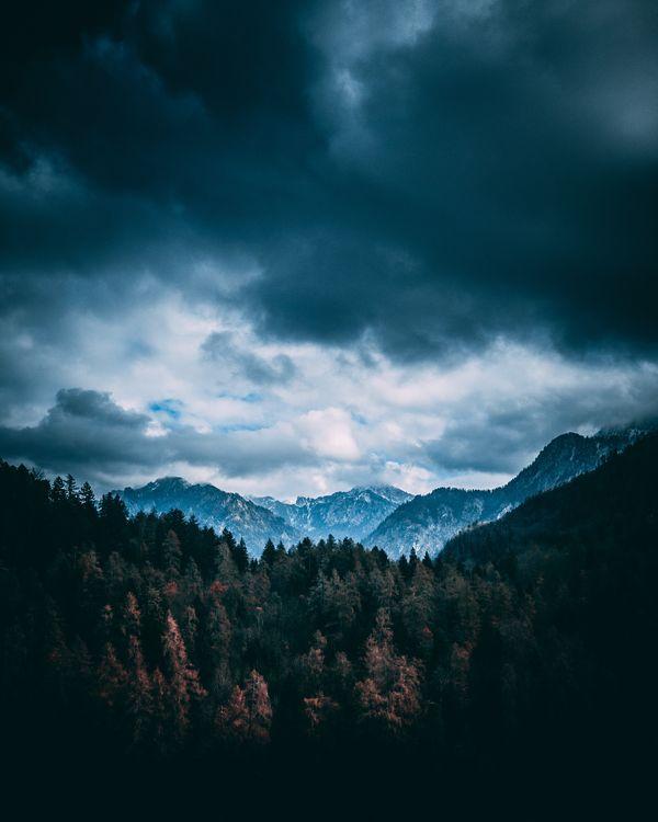 Горы и лес · бесплатное фото