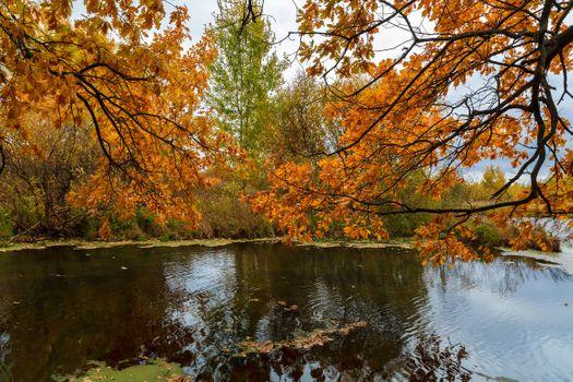 Осень над озером