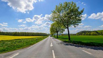 Бесплатные фото дорога, поле, деревья, пейзаж