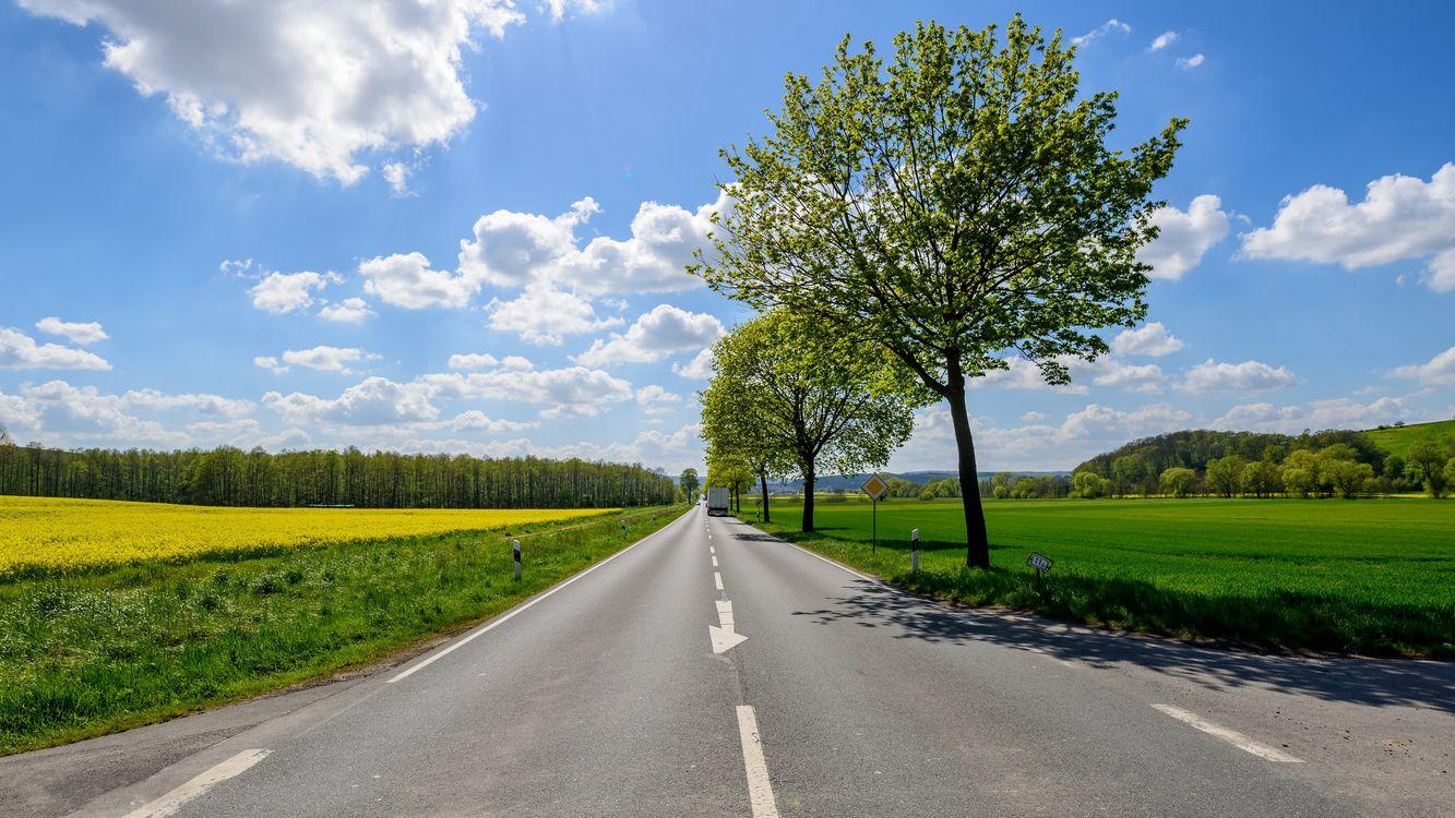 Обои дорога, поле, деревья, пейзаж на телефон | картинки пейзажи