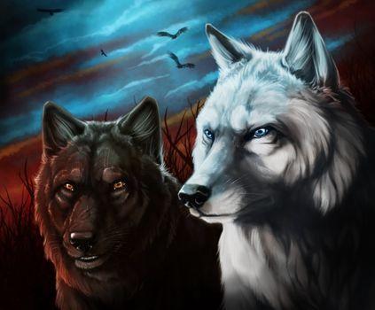 Фото бесплатно волки, волк, фантазия