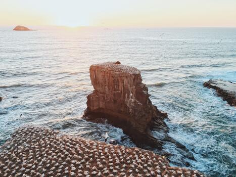 Фото бесплатно утро, вода, побережье