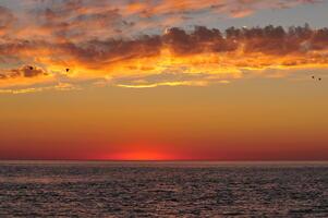 Фото бесплатно закатный пляж, горизонт, небо