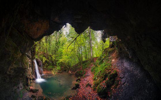 Фото бесплатно лес, скалы, пещера