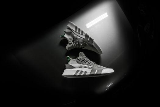 Stylish sneakers · free photo