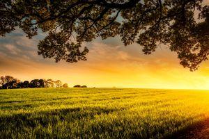 Фото бесплатно трава, сельская местность, пейзаж