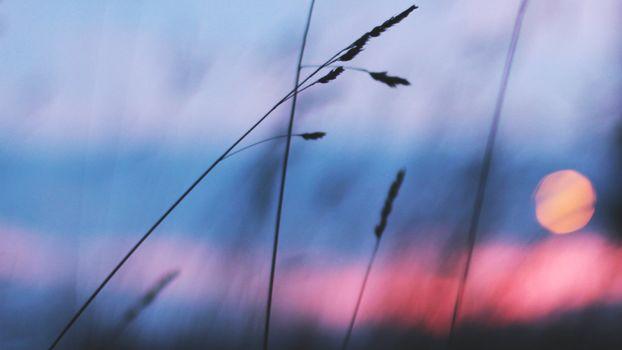 Фото бесплатно пейзажи, атмосфера земли, атмосфера