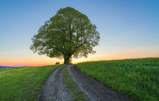 Фото бесплатно дорога, горы, пейзаж