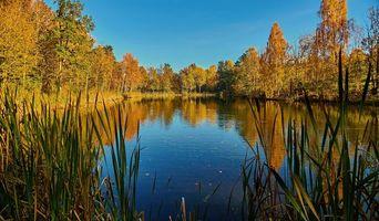 Фото бесплатно Воллен, Норвегия, цвета осени