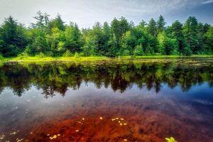 Фото бесплатно река, природа, Рикеттс Glen State Park
