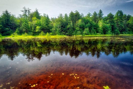 Фото бесплатно Ricketts Glen State Park, Pennsylvania, Риккетс Глен Стейт Парк